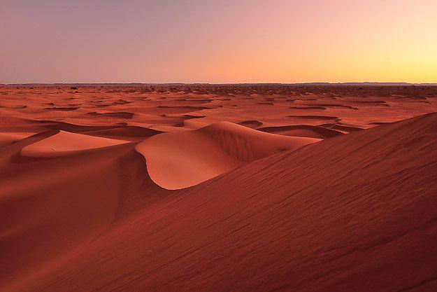 Photo of Exposition « Rêve du Sahara » : Le Maroc s'invite en Pologne