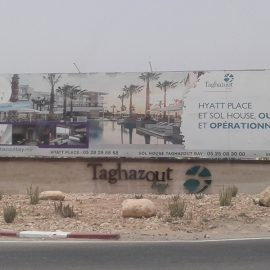 Taghazout-270