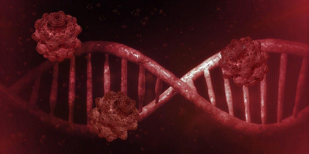 Photo of Première internationale, des chercheurs marocains analysent plus de 3000 génomes du Covid