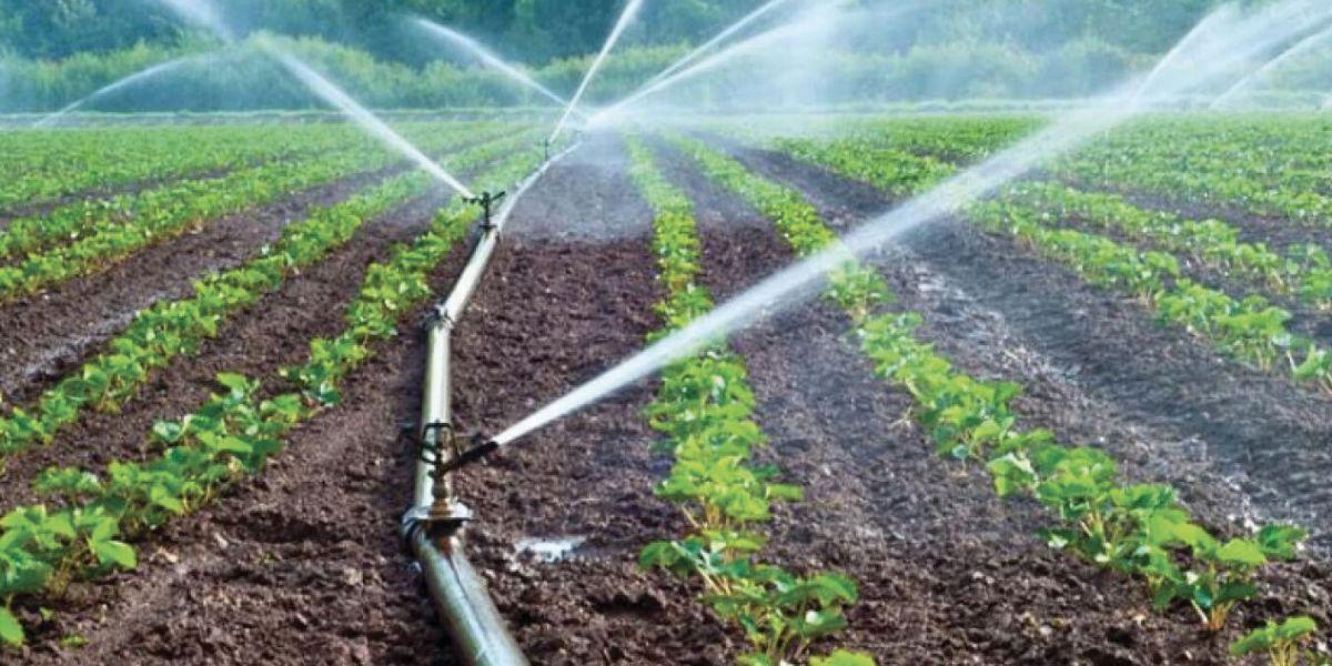 Photo of Souss: les agrumiculteurs manquent d'eau