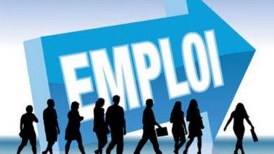 Photo of En chiffres, quel impact du Covid-19 sur l'employabilité des jeunes ?