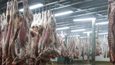 Photo de Casablanca : les abattoirs obtiennent le label halal